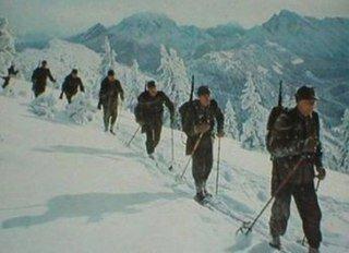 1. Gebirgs-Division (1-я горнострелковая дивизия)